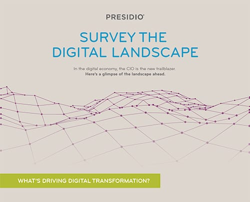 SURVEY THE DIGITAL LANDSCAPE